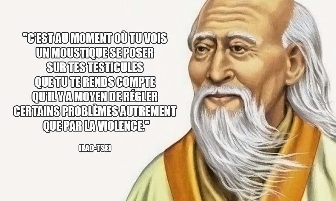 Lao Tse C est au moment ou tu vois un moustique se poser sut tes testicules que tu te rends compte qu il y a moyen de regler certains problemes autrement que par la violence
