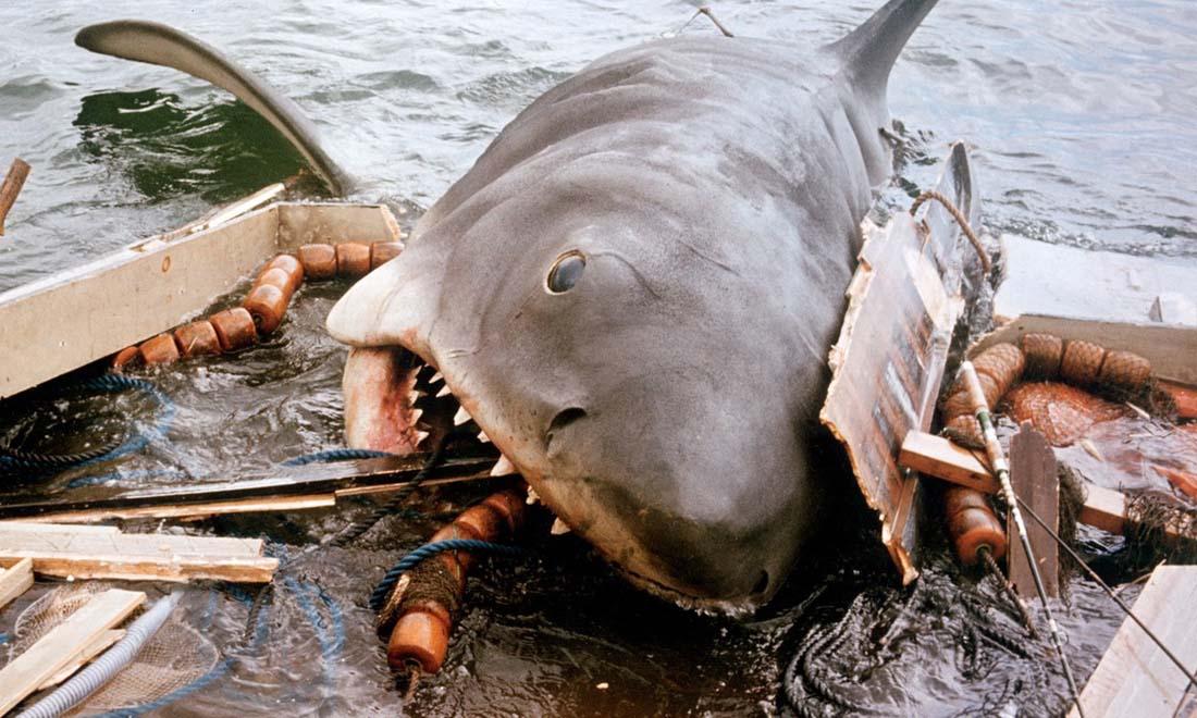 Le requin Grand Blanc (Les Dents de la mer 1987)