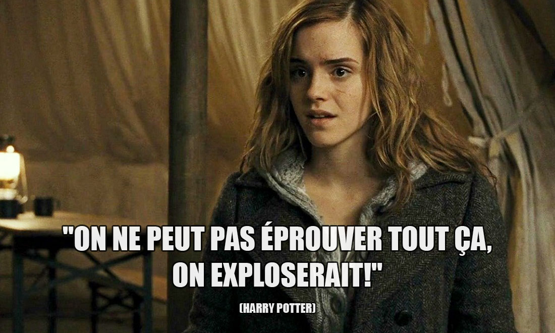 Harry Potter: On ne peut pas éprouver tout ça, on exploserait!