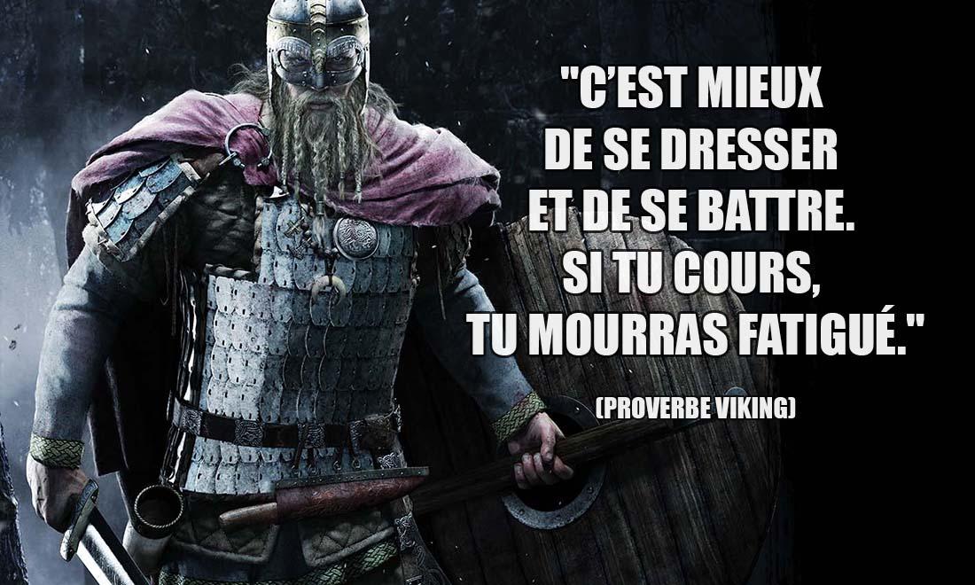 proverbe viking c est mieux de se dresser et de se battre si tu cours tu mourras fatigue