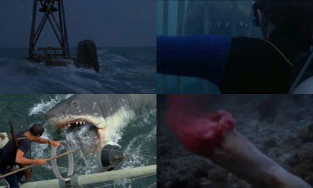 Scène Culte les Dents de la Mer